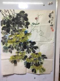 王研 书画菊花