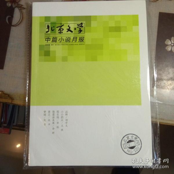 北京文学 中篇小说月报:【2021年第4期,全新未拆封】