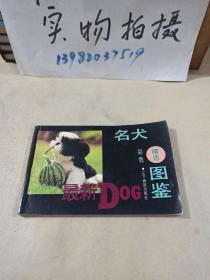 名犬精选彩色图鉴