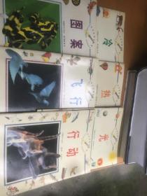 科学原理动动脑 行动 十 飞行 十 图案 十 光 十 热 冷 6本合售