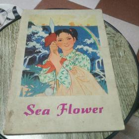 SeaFlower(外文画册)