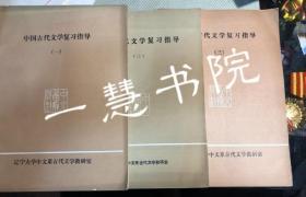 中国古代文学复习指导 一二三册(合售)