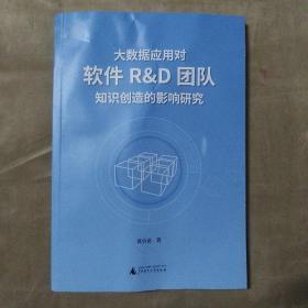 大数掘应用对软件R&D团队知识创造的影响研究