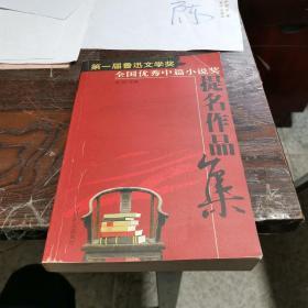 第一届鲁迅文学奖 全国优秀中篇小说提名作品集