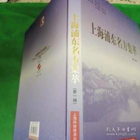 上海浦东名方集萃(第1辑)