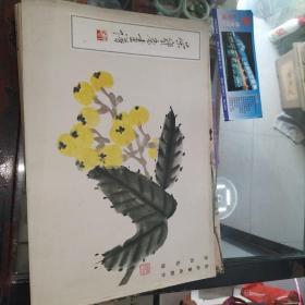 荣宝斋画谱(8)花卉草虫部分