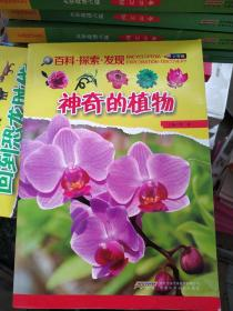 神奇的植物 --百科·探索·发现(少年版)