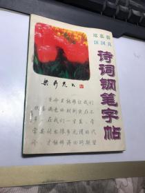 席慕容汪国真诗词钢笔字帖