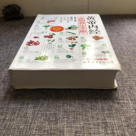 黄帝内经:食物养生手册