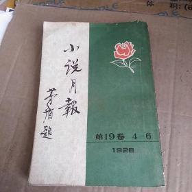 小说月报第十九卷