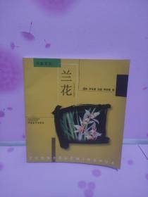 中国名花:兰花