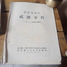 震惊全国的武汉事件720