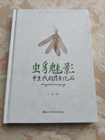 虫豸魅影:中生代的昆虫化石