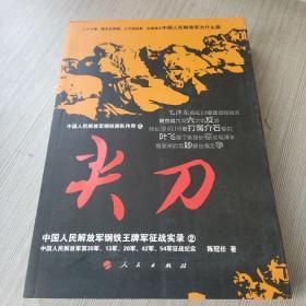 尖刀:中国人民解放军钢铁王牌军征战实录2