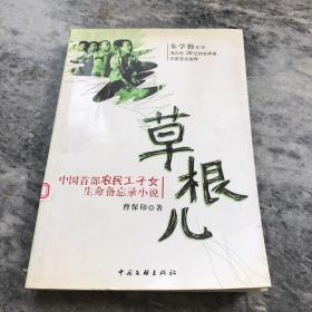 草根儿:中国首部农民工子女生命备忘录小说