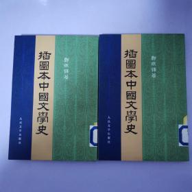插图本中国文学史(一、二、册)繁体竖版 多插图