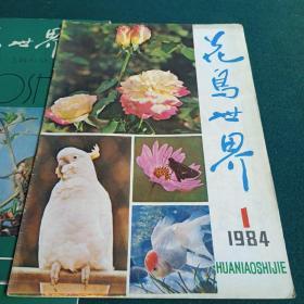 花鸟世界1984年1、2、3
