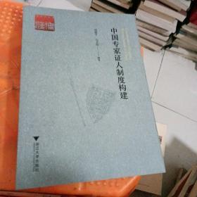 中国专家证人制度构建