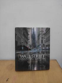 WALL  STREET  FINANCIAL  VAPITAL