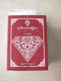 新编藏文字典