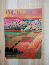 Color Choices:Making Color Sense Out of Color Theory