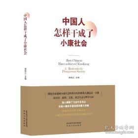 中国人怎样干成了小康社会