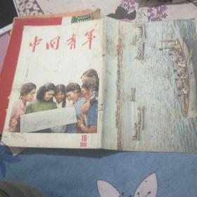 中国青年55,16