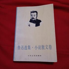 鲁迅选集:(小说散文卷、杂文卷)(全两册)——二十世纪中国著名作家文库