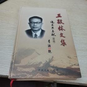 王毅林文集