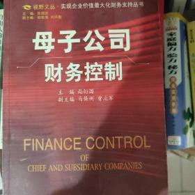母子公司财务控制