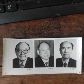 1993年,新当选的八届政协副主席:霍英东(香港企业家)、安子介(香港知名实业家)、马万祺(澳门企业家)