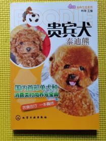 宠尚生活系列:贵宾犬(泰迪熊)
