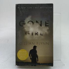 Gone Girl:A Novel