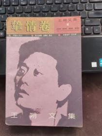 王朔文集:挚情卷