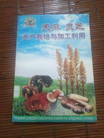 天麻灵芝高产栽培与加工利用(馆藏)