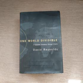 ONE WORLD DIVISIBLE A Global History Since 1945【一个可分割的世界:1945年以来的全球历史 英文原版】