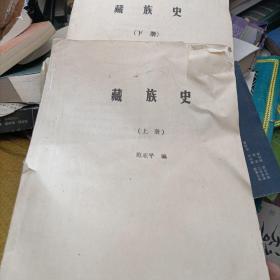 藏族史上下册