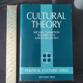 cultural  theory theories history of culture cultural studies 英文原版