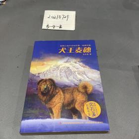 动物小说大王沈石溪·经典书系:犬王麦穗