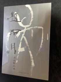 赵冷月书法精品集:纪念赵冷月诞辰一百周年书法精品集