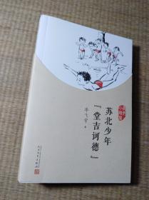 """我们小时候:苏北少年""""堂吉诃德""""(2017年新版)正版图书 内无写划 实物拍图"""