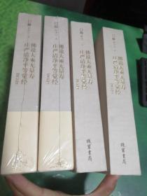 佛说大乘无量寿庄严清净平等觉经【讲记】 1~4全四册