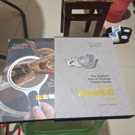 贵州三叠纪古生物化石探秘(16开盒装)