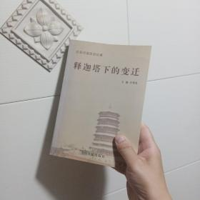 释迦塔下的变迁:应县旧城改造纪事