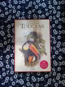John Gould,Family of Toucans