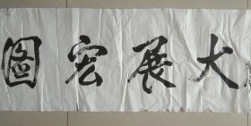 著名诗人 安迪光 先生 书法 《大展宏图》