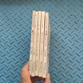 把玩艺术系列图书:葫芦+鸟笼+手把件挂件+烟斗+手串把玩与鉴赏(共5本合售)