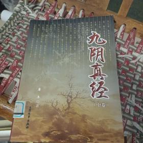 九阴真经(中)