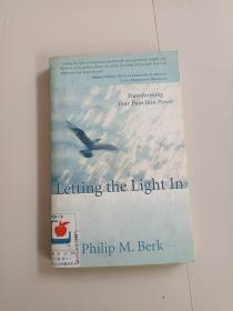 LETTING THE LIGHT IN:TRANSFORMING YOUR PAIN INTO POWER(让光进来:将你的痛苦转化为力量)