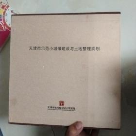 天津市示范小城镇建设与土地整理规划(全八本)